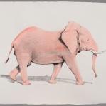 Elefante rosa Aguada de pigmento sobre papel indio hecho a mano 75x55 cms