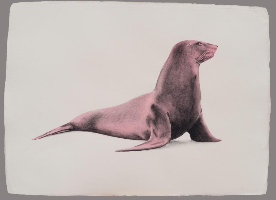 leon-marino