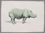 Rinoceronte menta Aguada de pigmento sobre papel indio hecho a mano 75x55 cms